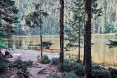 Wildsee Schwarzwald